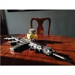 Springfield M1A MA9229