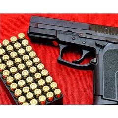 Gun 2.0 (New arrival)