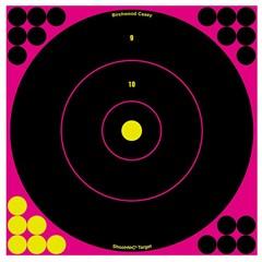 Birchwood Casey Llc Pink Bull's-Eye Target Shoot-N-C