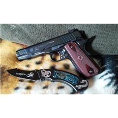 Walther P22 5120302
