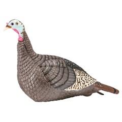 Hunters Specialties Inc Strut-Lite Hen