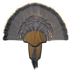 Hunters Specialties Inc Tail & Beard Mounting Kit Turkey