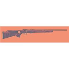 Savage Arms 17 93R17